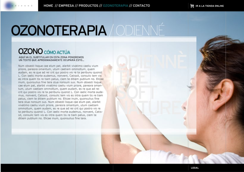 Microsite Odiennè 3