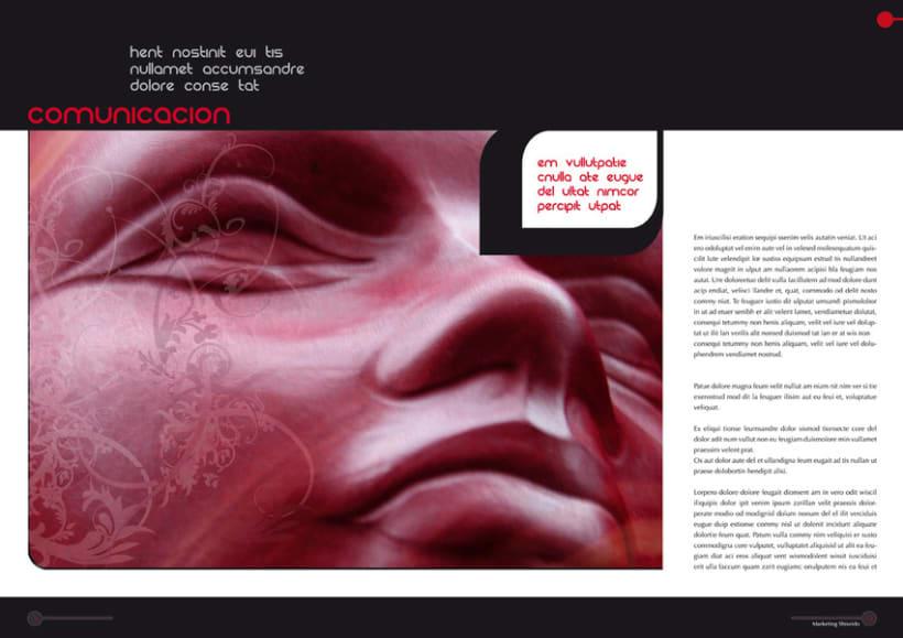 Shiseido - Propuesta Revista 5