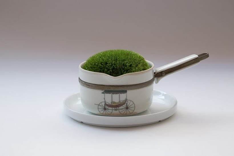 Moss Garden 3