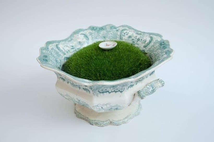 Moss Garden 1