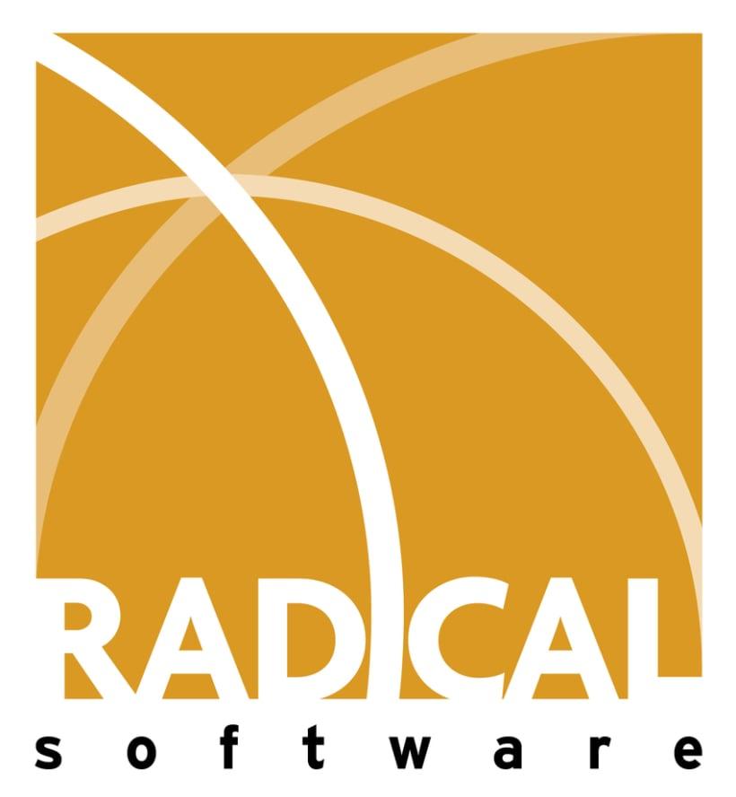 Radical Software 2