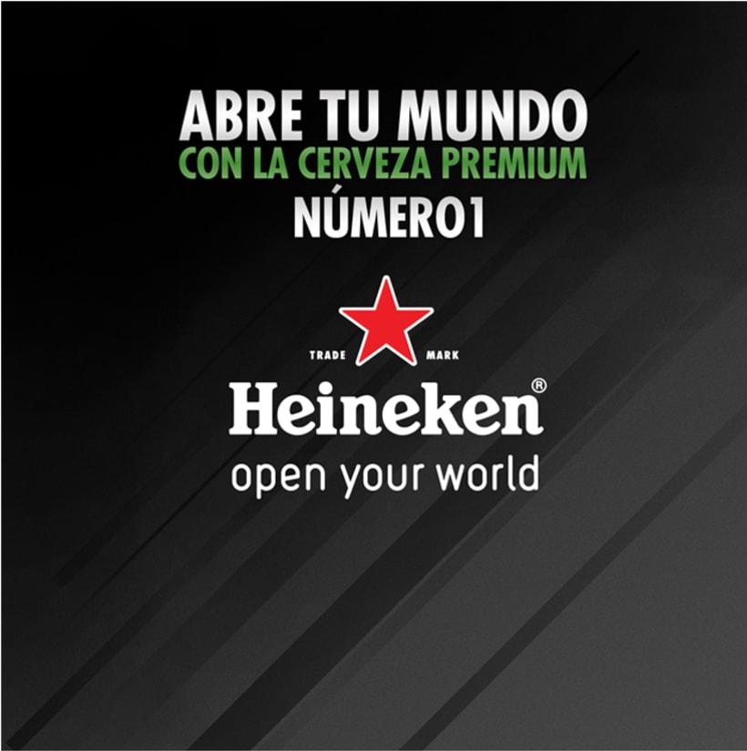 Heineken 6