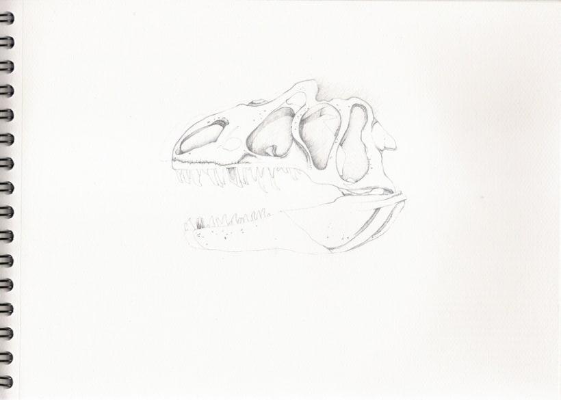 Ilustraciones a lápiz (1º Fase) 3