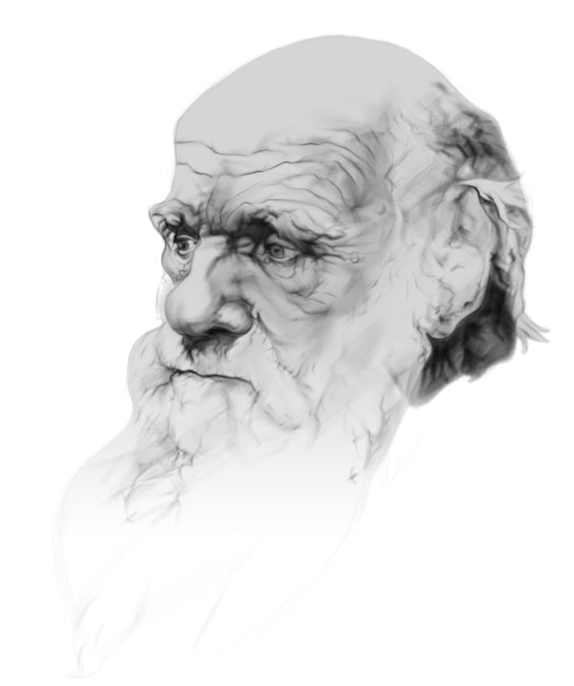 Darwin Portrait 1