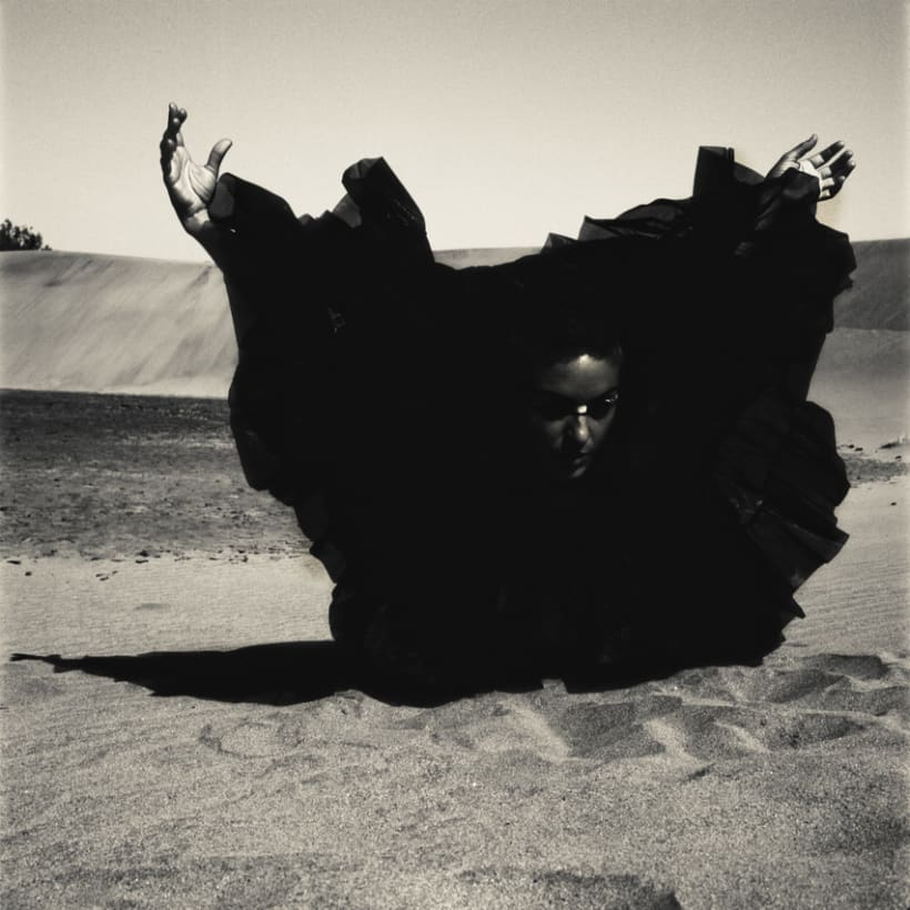 Sand...wind...bird 1