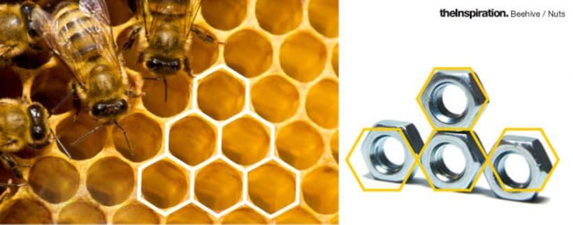 Beecreator Identidad 2