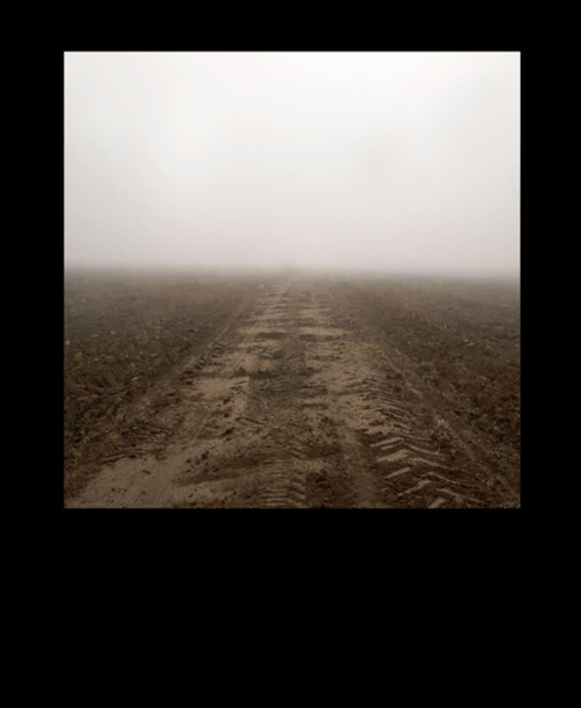 Tierra de Campos 3