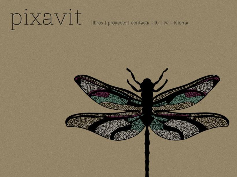 Pixavit Editorial 1