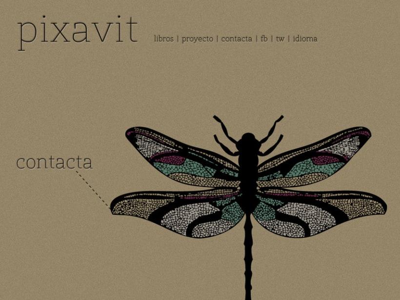 Pixavit Editorial 2