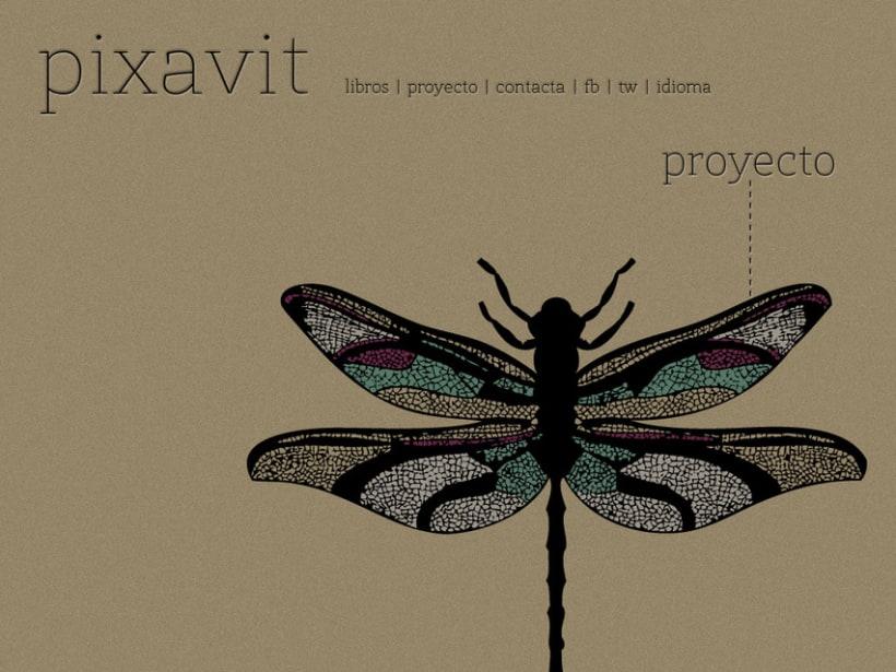Pixavit Editorial 3
