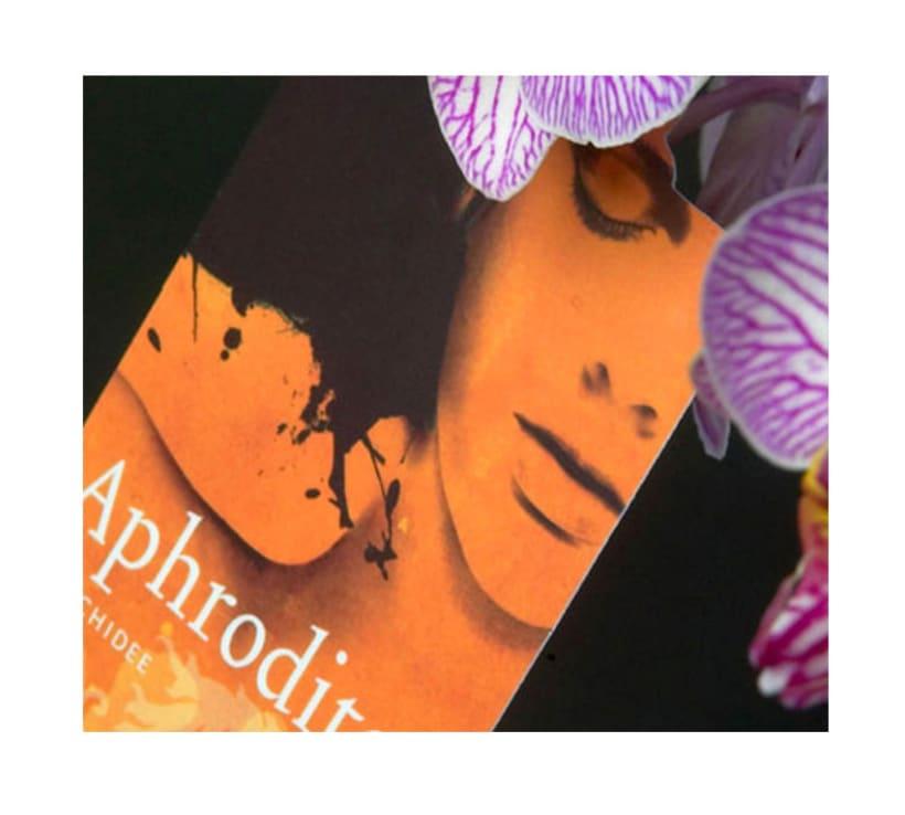 Aphrodite ( Holanda ) 3