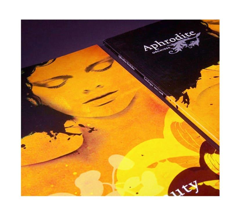 Aphrodite ( Holanda ) 4