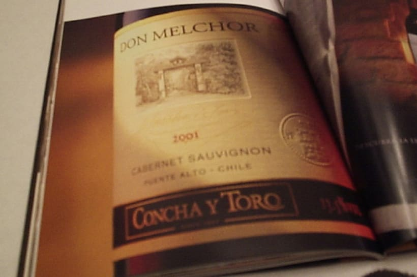 Concha y Toro 6