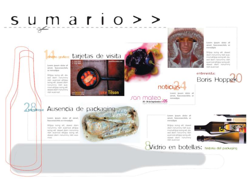 Diseño de revista 3