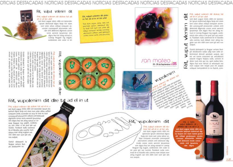 Diseño de revista 9
