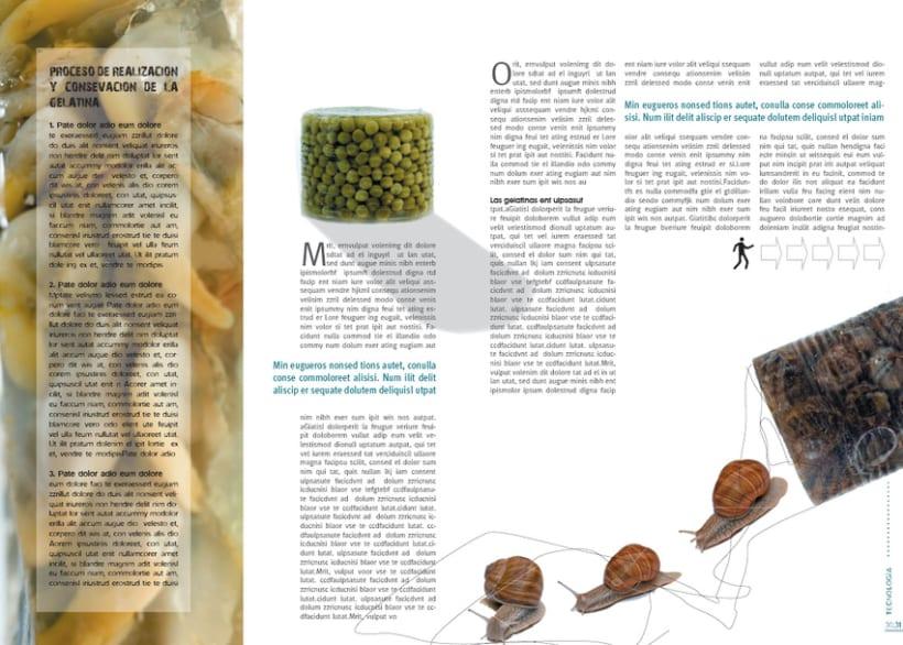 Diseño de revista 10