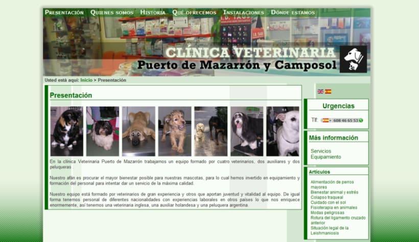 Web cl nica veterinaria domestika - Diseno de clinicas veterinarias ...