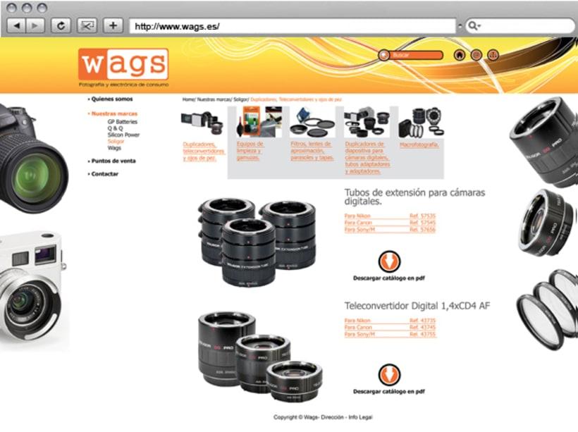 Web Wags 4