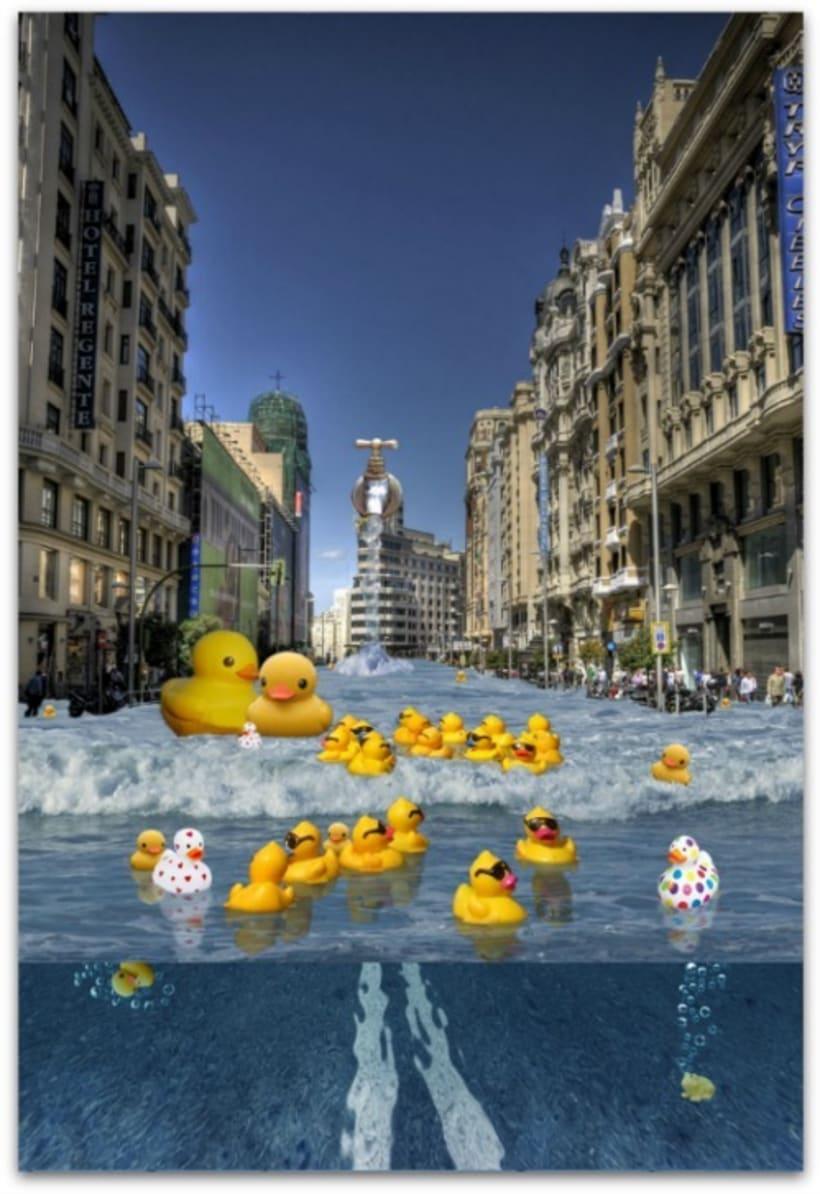 Patos por el mundo 6