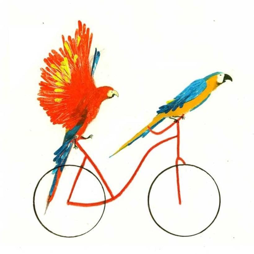 10 razones para usar la bici 14