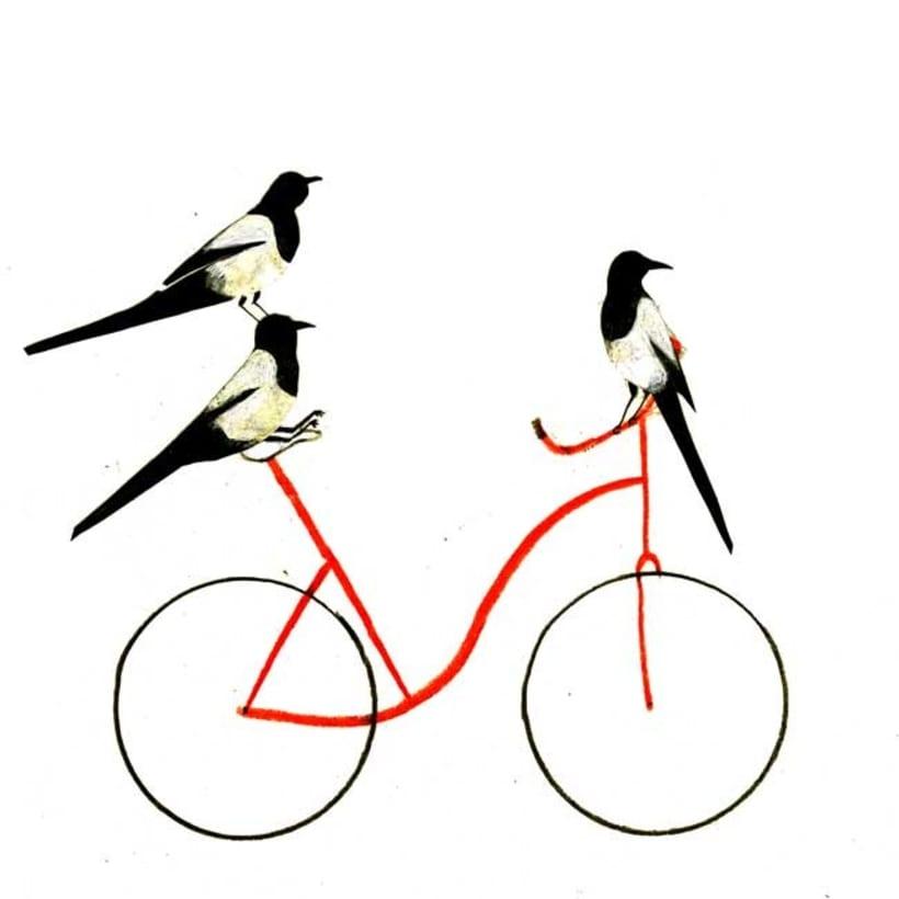 10 razones para usar la bici 6