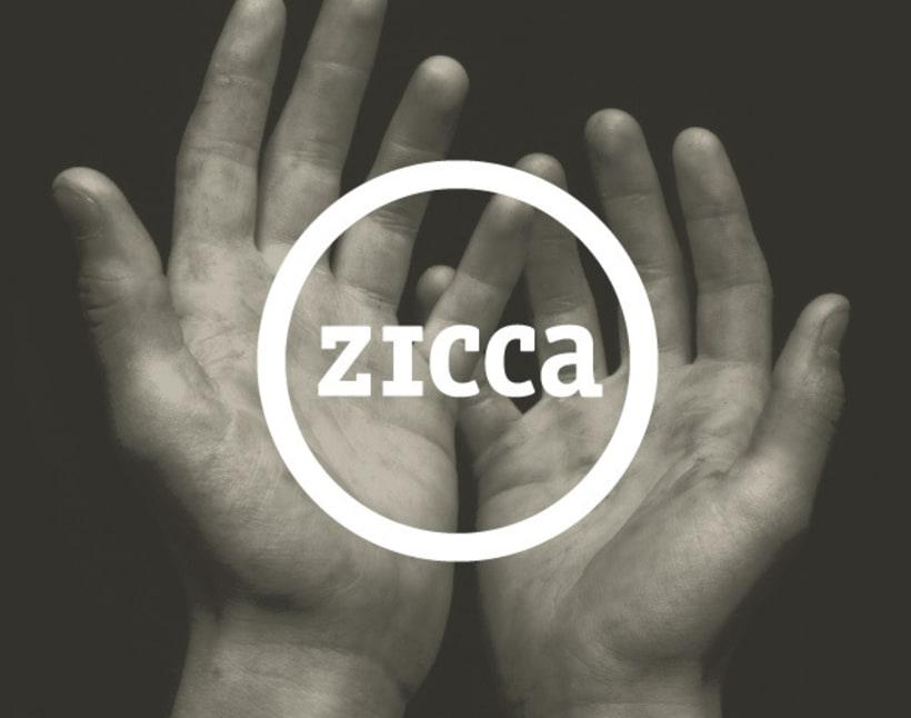 Zicca 1