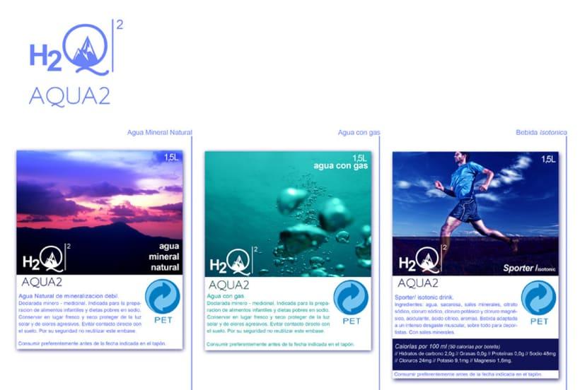 H2Q2 1