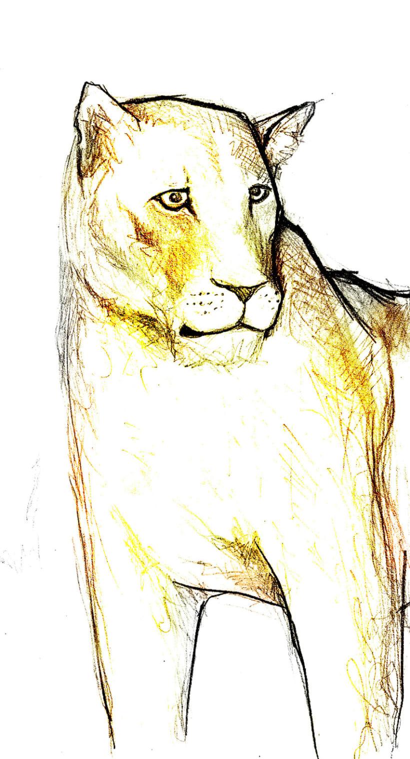Animales 9