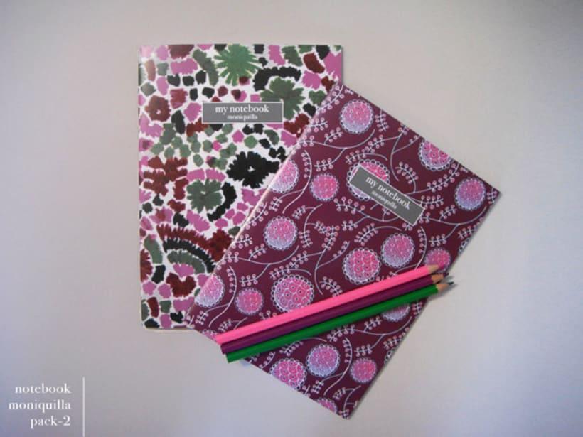 Notebooks 11