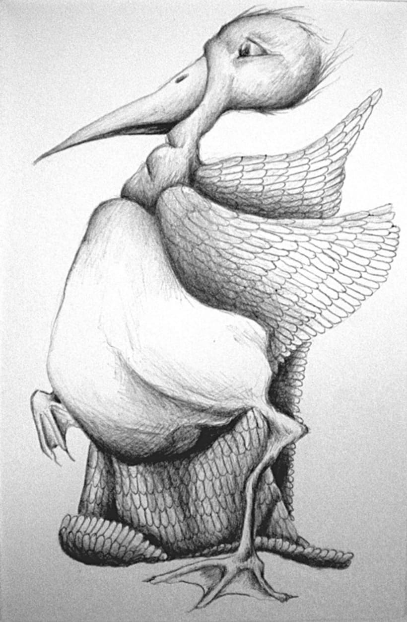 Ilustración con Bolígrafo 2