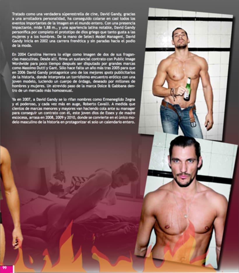 Maquetación revista online Variet 53