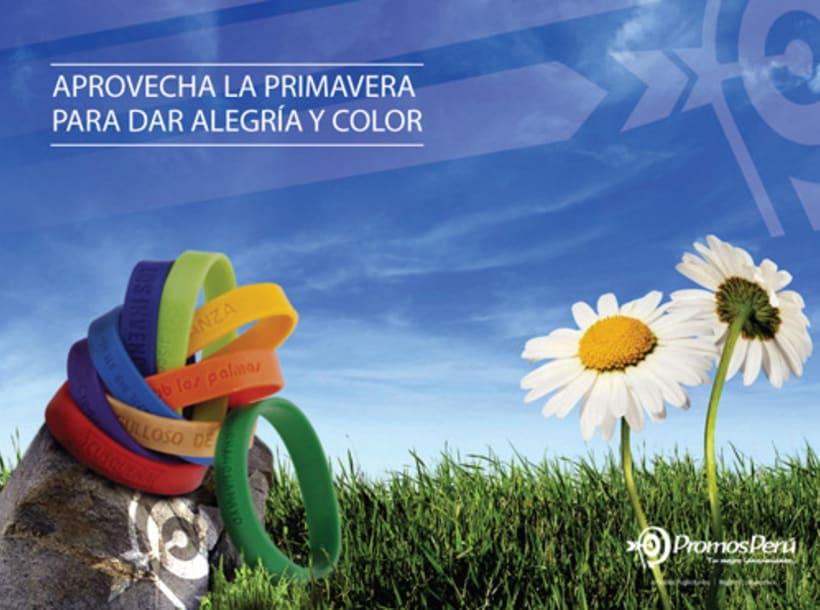 Branding 2012   Promos Perú 6