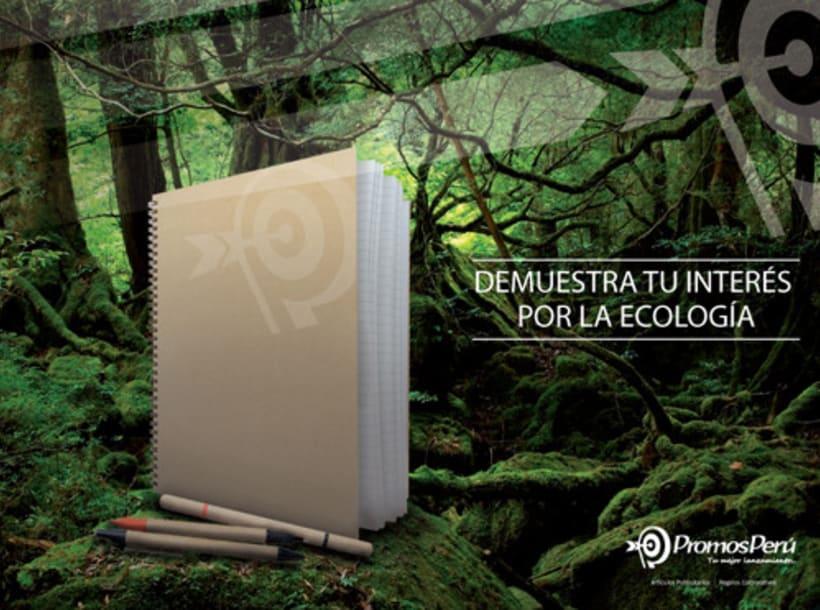 Branding 2012   Promos Perú 3