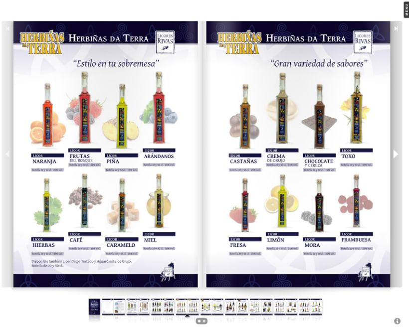 Licores Rivas catálogo bebidas 2012 3