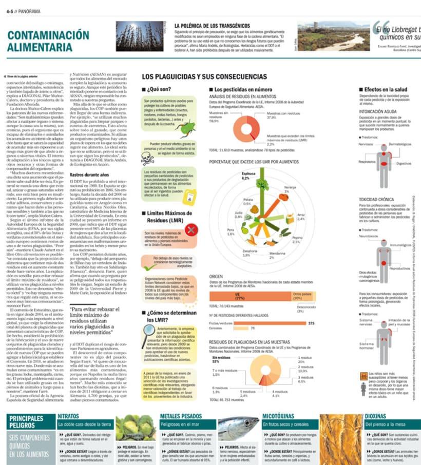 Infografía Diagonal 2