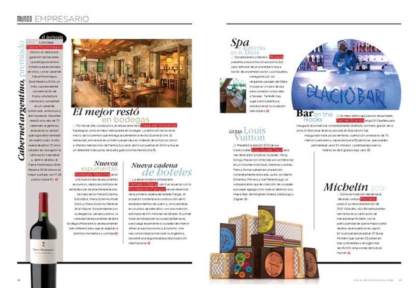 Revista Guapa Nº II 3