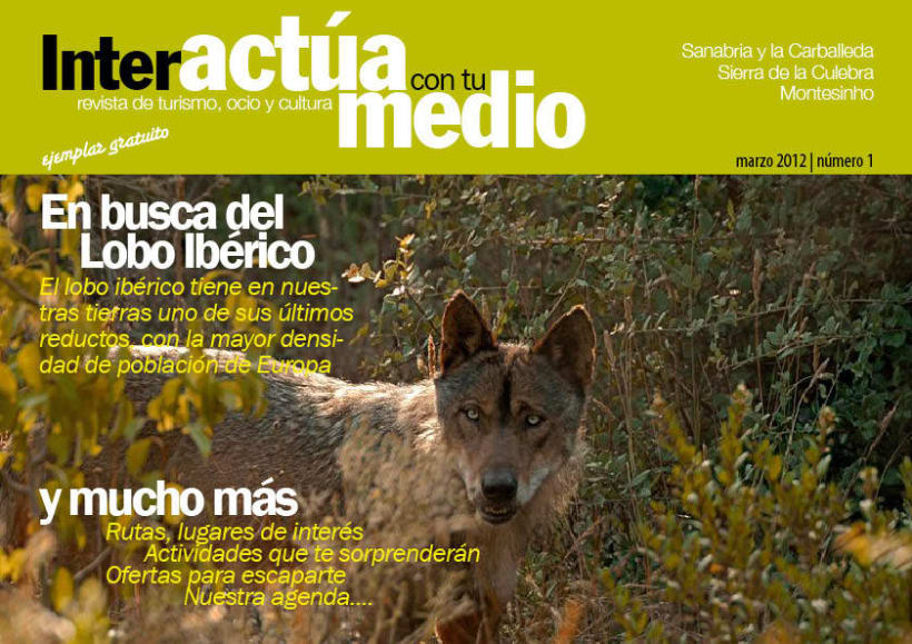 Revista interactiva digital 1