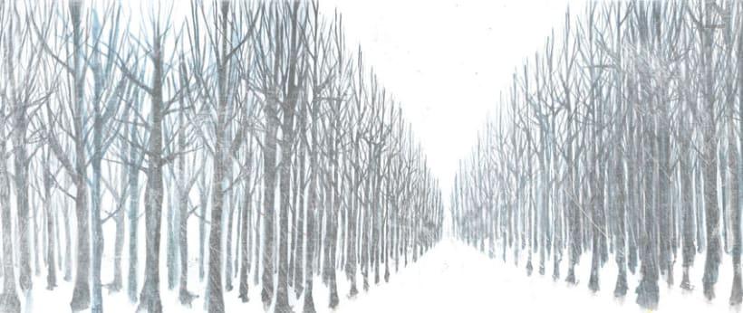 ...entre bosques... 5