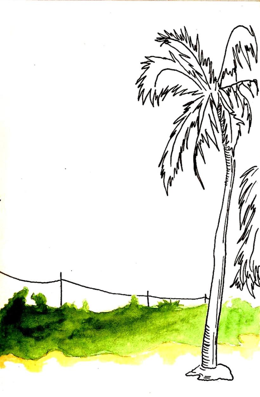 Dibujos por La Habana 7