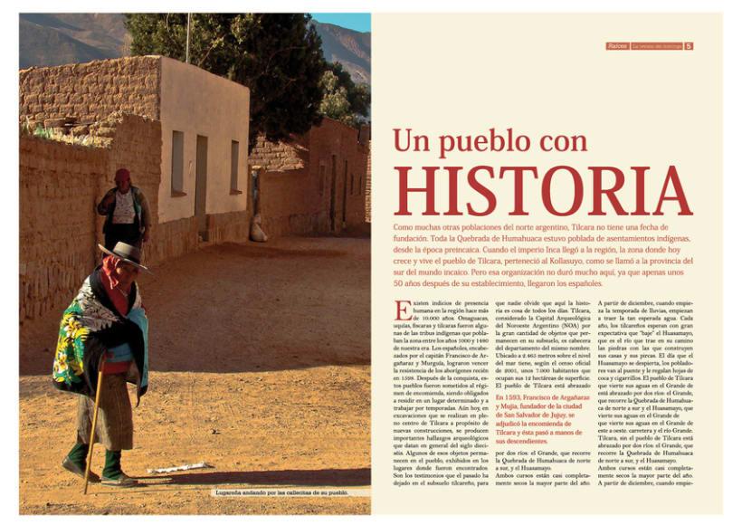Diario y Revista provinciales 8