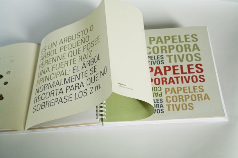 Catálogo de papeles especiales 15