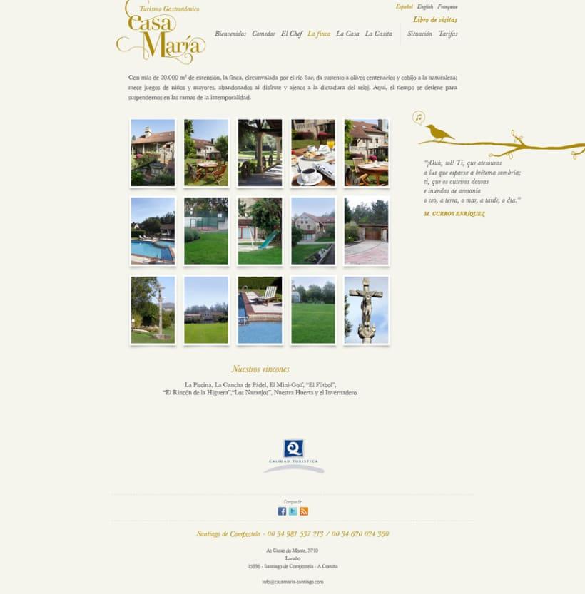 Imagen de marca y web. 5