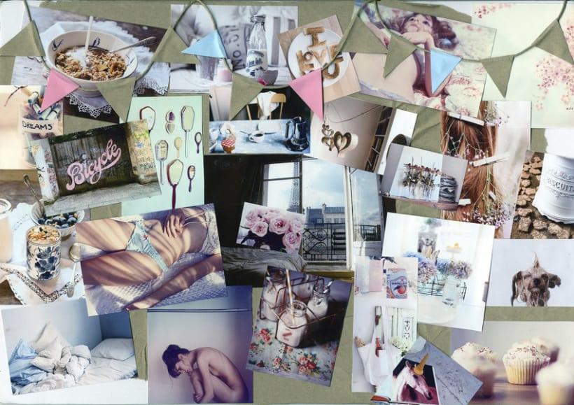 Colección S2011 1