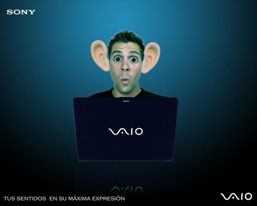 Sony VAIO 1er año 5