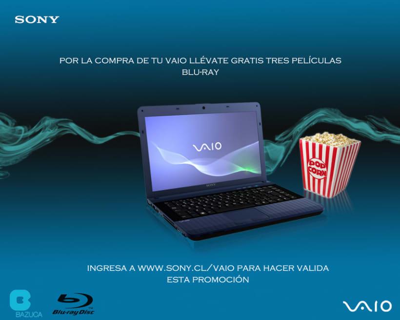 Sony VAIO 1er año 4