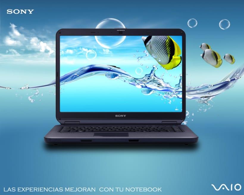 Sony VAIO 1er año 2