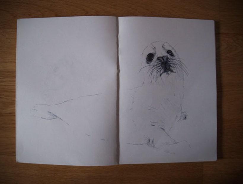 Animales 6