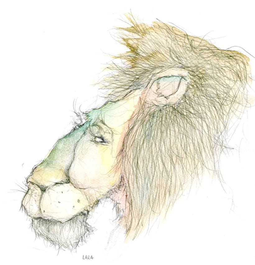 Ilustración animales del Zoo (Jerez) 14