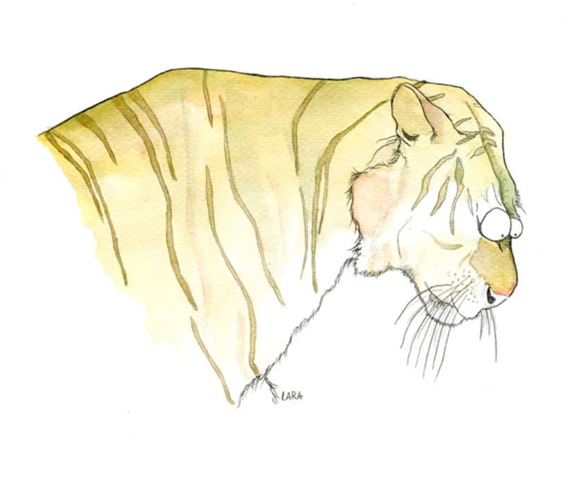 Ilustración animales del Zoo (Jerez) 10