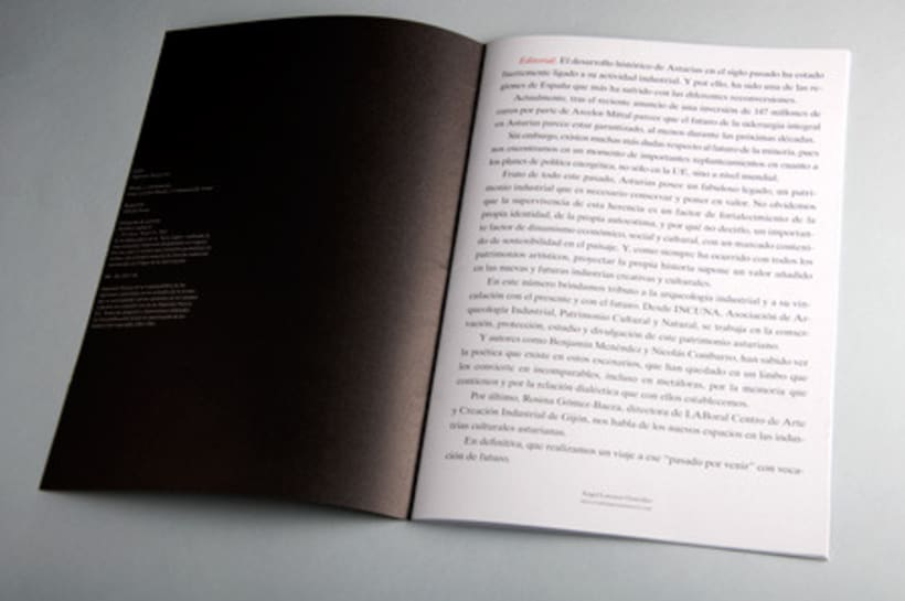 Revista Narcea 31